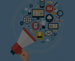 web social media marketing